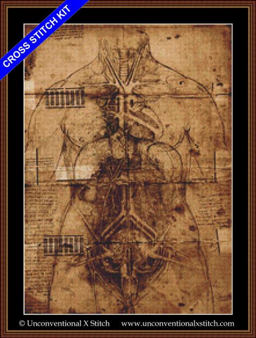 Page of Anatomy cross stitch kit