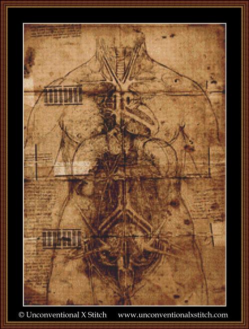 Page of Anatomy cross stitch pattern