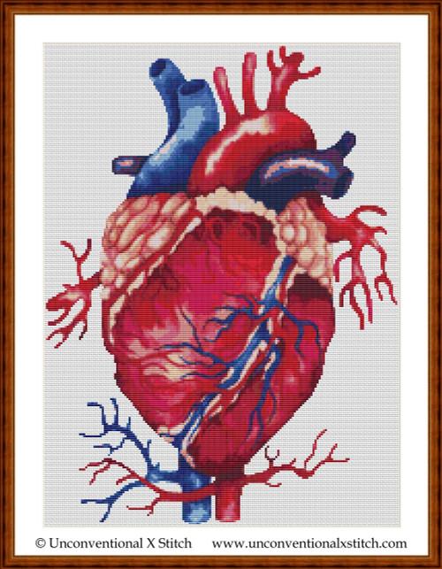 Anatomical Heart cross stitch pattern (Minimum Colours edition)