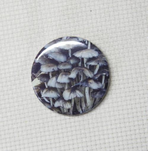 Fungi needle minder