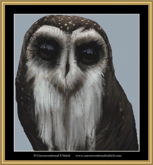 Owl Master cross stitch pattern