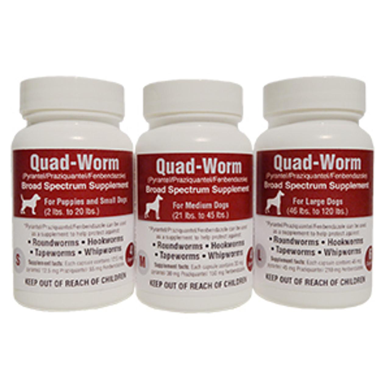 Quad-Worm  Dog Dewormer