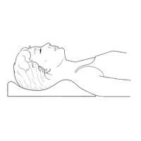 THERAPEUTICA PILLOW - LARGE
