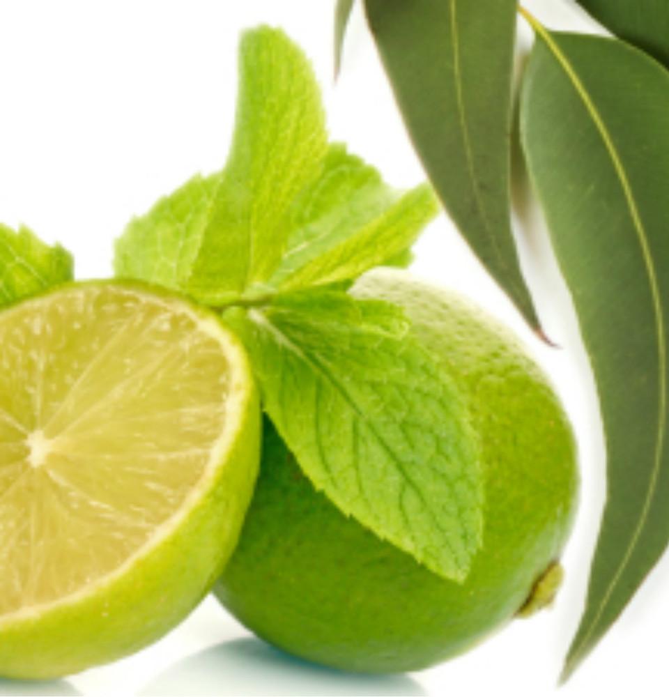 Sulphate-free Body Wash: Spearmint, Lime & Eucalyptus 16oz