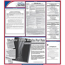 ComplyRight™ Texas State Labor Law Poster, 24 inch; x 24 inch;