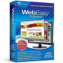 WebEasy Professional 10, Download Version