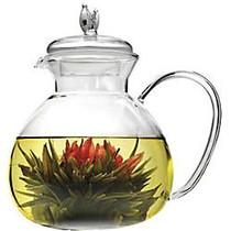 Primula Asha Teapot - Clear