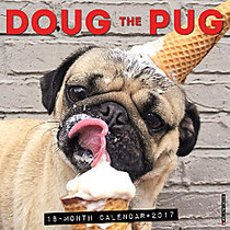 Willow Creek Press 18-Month Monthly Wall Calendar, 12 inch; x 12 inch;, Doug The Pug, July 2016 to December 2017