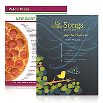 Full-Color Flyer, 8 inch; x 11 inch;, Pack Of 25