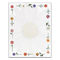 Masterpiece Studios Floral Design Paper, 8 1/2 inch; x 11 inch;, Daisies, Pack Of 100 Sheets