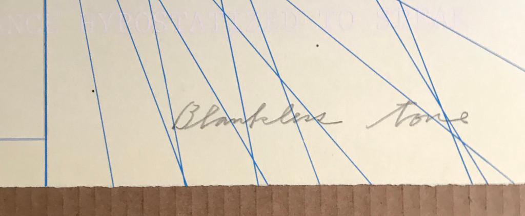 Shusaku Arakawa, Blankless Tone, 1979