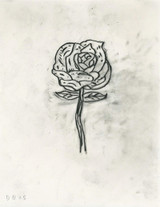 DONALD BAECHLER Untitled (Rose) 2015, Unique Graphite drawing on paper with museum provenance