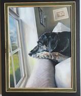Jonathan David Hall, Wistful Pup, 2020
