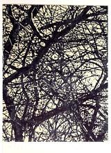 Bob Stanley, Tree, 1976