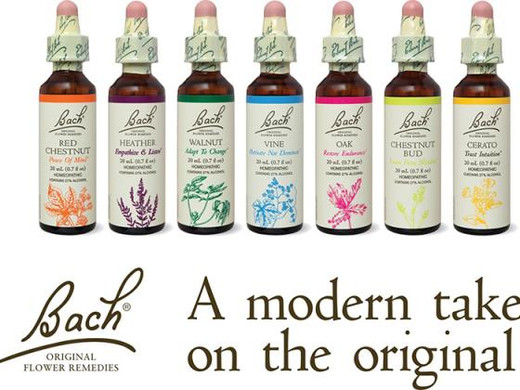 Your Go-To Guide for Bach Flower Remedies
