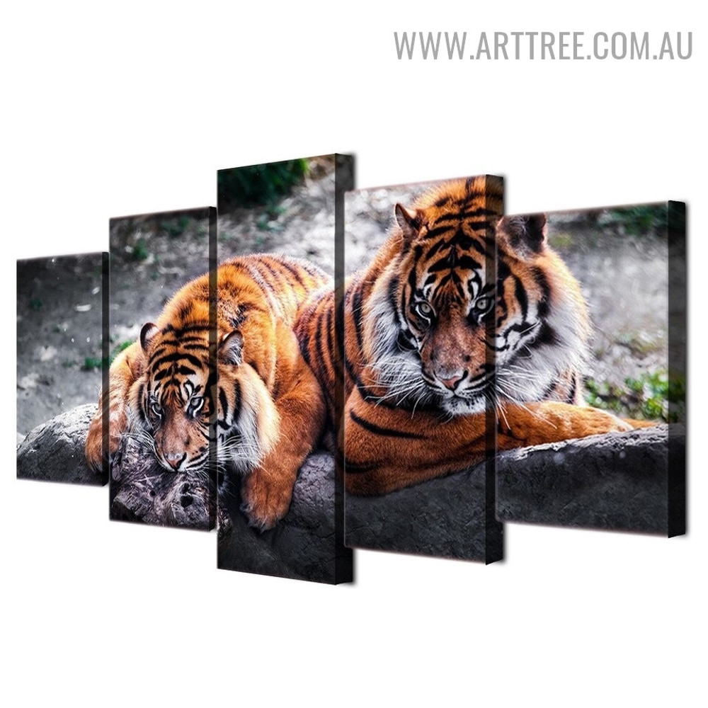 Real Tigers Sky Animal Modern 5 Piece Large Size Floral Artwork Image Canvas Print for Room Wall Garniture