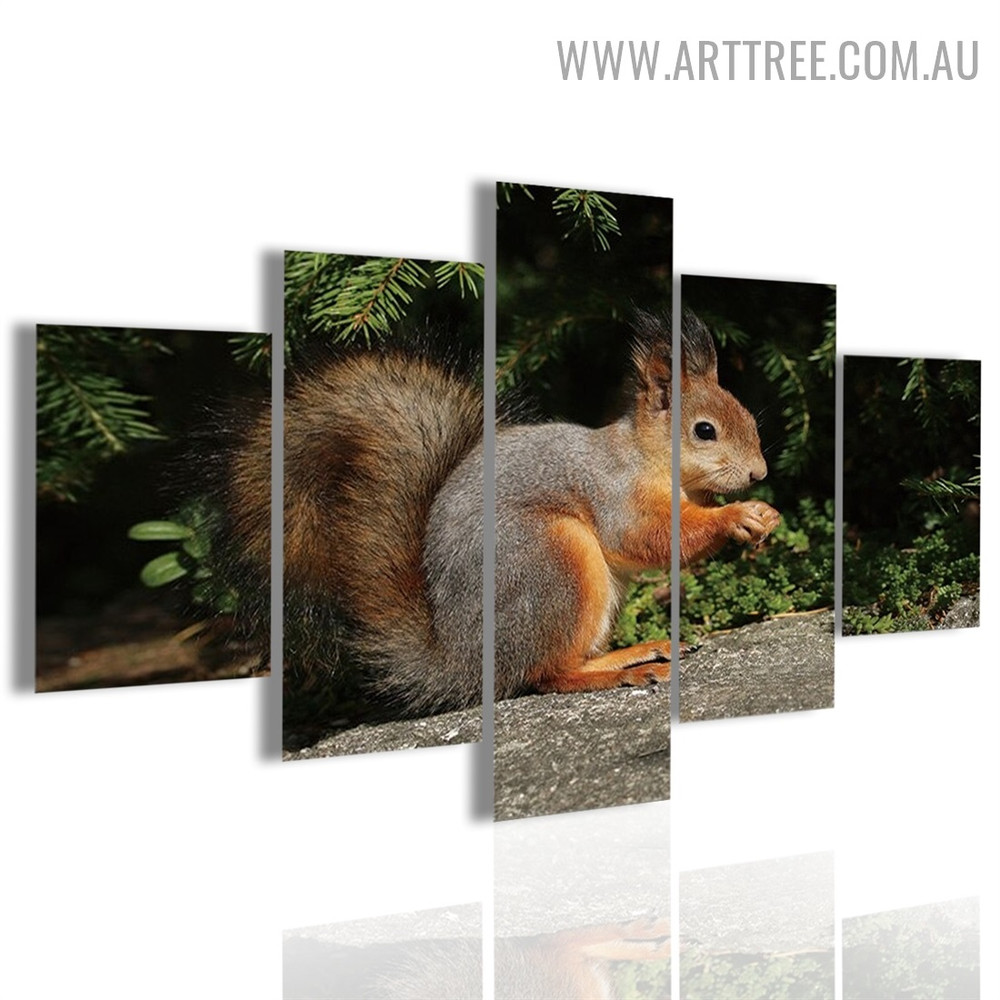 Cute Squirrel Land Animal Modern Landscape 5 Piece Over Size Floral Painting Image Canvas Print for Room Wall Moulding