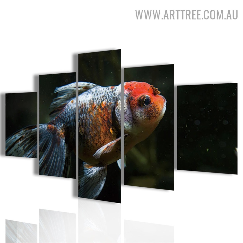 Colourful Fish Animal Modern 5 Piece Split Art Image Canvas Print for Room Wall Garnish