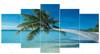 Sand Beach with Palm Tree