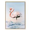 Flamingo Bird Print
