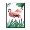 Couple Flamingo Bird