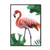 Pinkish Flamingo