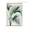 Green Areca Palm Canvas Print