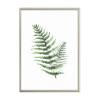 Celandine Leaf Canvas Print