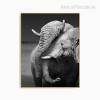 African Elephant Animal Love Wall Decor