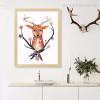 Deer Animal African Photo Art