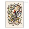Retro Colorful Birds Fresco Canvas Print