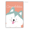 Congratulations Cute Dog Animals Wall Art
