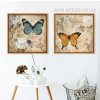 White Rose Blue Brown Butterfly Retro Poster Prints