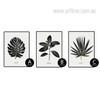 Botanical Monstera Palm Golden Tree Leaf Set (2)