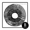 Long Tree Ring Black and White Canvas Wall Art (2)