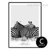 Black and White Pilanesberg National Park Zebra Life Animal Art (2)