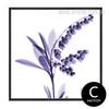 Imagine Believe Words Design Purple Floral Art (3)