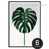 Monstera Leaf Art