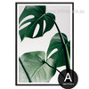 Monstera Leaf Design Green Botanical Print