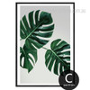 Monstera Leaf Design Canvas Print