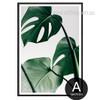 Monstera Leaf Design Green Botanical Print