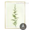 Minimal Green Ferns Plant Life Poster Print