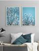White Magnolia Flowers Style Botanical Prints (3)