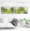 Botanical Palm Tree Tropical Plants Art (2)
