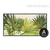 Botanical Palm Tree Tropical Plants Canvas Print