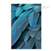 Blue Feathers Design Living Room Decor