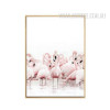 Pink Flamingo Bird Canvas Art