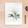 Romantic White Floral Artwork
