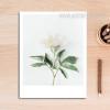 Romantic White Floral Artwork
