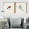 Modern Cute Birds Kingfisher Bee Eater Design Scandinavian Prints